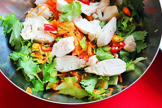 recipe Vietnamese Spicy Chicken Salad