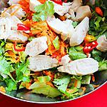 recipe Vietnamese Spicy Chicken Salad